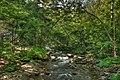 16-16-045, little river - panoramio.jpg