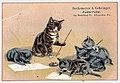 1883 - Berkemeyer & Gehringer - Trade Card - Allentown PA.jpg