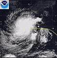 1989 Pacific typhoon 35W December 6.jpg