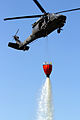 1st Air Cav trains to fight local, national wildfires 140530-A-WD324-089.jpg