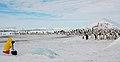 2007 Snow-Hill-Island Luyten-De-Hauwere-Emperor-Penguin-43.jpg