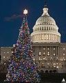 2007 U.S. Capitol Christmas Tree (30995523933).jpg