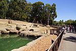2012-06-09 Oakland Zoo 057 (7439976686).jpg
