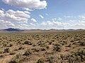 2013-07-04 15 37 14 Sagebrush-steppe along U.S. Route 93 in central Elko County in Nevada.jpg