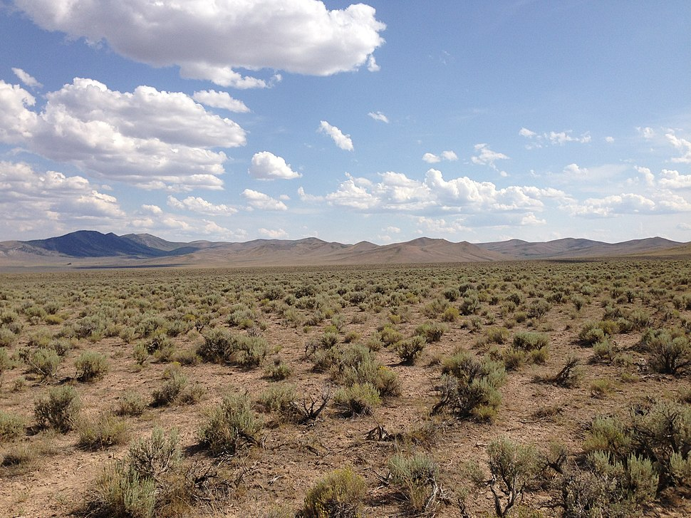 2013-07-04 15 37 14 Sagebrush-steppe along U.S. Route 93 in central Elko County in Nevada.jpg