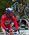 2014 Giro d'Italia, bouhanni (17600688909).jpg