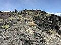 2015-04-18 14 31 07 Spiky rocks on the western slopes of Topog Peak, Nevada.jpg