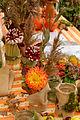 2015-10-17 11-12-44 marche-plantes-belfort.jpg
