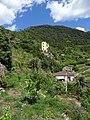 20160811 035 Cinque Terre - Corniglia (29030009906).jpg