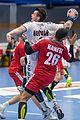 20170112 Handball AUT CZE 5697.jpg
