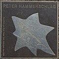 2018-07-18 Sterne der Satire - Walk of Fame des Kabaretts Nr 50 Peter Hammerschlag-1130.jpg