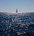 252 365 Tarde en alta mar (6132664394).jpg