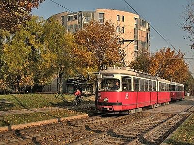 Tram in Langobardenstraße, Vienna