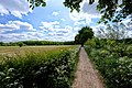 3981 Bunnik, Netherlands - panoramio (108).jpg