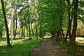 46-227-5003 Zhovkva Park RB.jpg