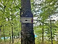 5-Obernhausen-L.jpg