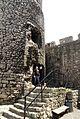 90vik Zamek w Będzinie. Foto Barbara Maliszewska.jpg