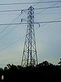 ATC Power Line - panoramio (126).jpg