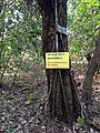 "A ""Do not litter"" signboard in Pushpagiri wildlife sanctuary, Subramanya, Karnataka.jpg"