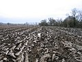A Ploughed Field - geograph.org.uk - 369126.jpg