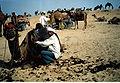 A camels hair being shorn at Pushkar..jpg