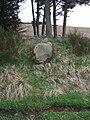 A fair-sized cobble - geograph.org.uk - 367594.jpg