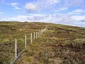 A fence on Millstone Edge - geograph.org.uk - 549773.jpg