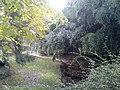 A park in Hollin Hills.jpg
