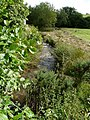 A stream at Bradwell which feeds into the river Caen at Knowle - geograph.org.uk - 1413129.jpg
