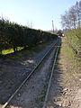 Abreschviller-Rails du petit train (2).jpg