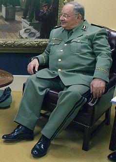 313ebfa4c05c0 الجيش الوطني الشعبي الجزائري - ويكيبيديا، الموسوعة الحرة