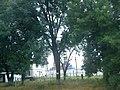 Akhtarskiy, Krasnodarskiy kray, Russia - panoramio.jpg