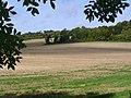 Albury Downs - geograph.org.uk - 993317.jpg
