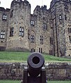 Alnwick Castle Cannon - geograph.org.uk - 1312656.jpg