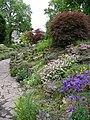 Alpine Garden - geograph.org.uk - 431417.jpg