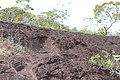 Alto Araguaia - State of Mato Grosso, Brazil - panoramio (1180).jpg