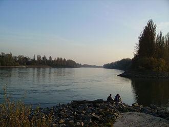 Nemetona - Image: Altrip Rhein Sueden