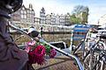 Amsterdam (6578744715).jpg