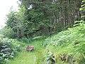 An abandoned wheelbarrow on the forest path by Ty'n y simdde - geograph.org.uk - 487988.jpg