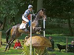 Andrew hoy master monarch coutts curve burghley 2007.jpg