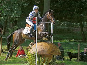 "Cross-country equestrianism - ""Skinny"" fences are designed to test the training of the horse and the rider's ability to ride accurately, and provide the horse an easy ""way out"" if the rider does a poor job"