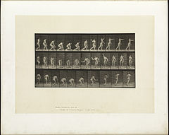Animal locomotion. Plate 303 (Boston Public Library).jpg