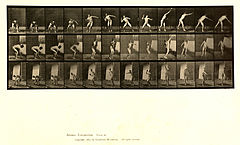 Animal locomotion. Plate 310 (Boston Public Library).jpg