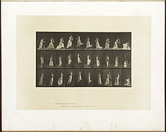 Animal locomotion. Plate 515 (Boston Public Library).jpg