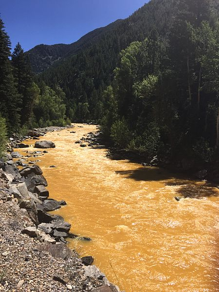 The Animas River between Silverton and Durango within 24 hours of the spill.