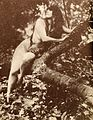Annette Kellerman in a tree (publicity still, Daughter of the Gods).jpg