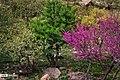 Arghavan valley, Ilam 2020-04-15 07.jpg