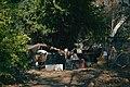 Arroyo Seco Homeless Encampment 03.jpg