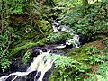 Arthog Waterfalls - geograph.org.uk - 610636.jpg