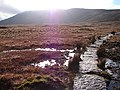 Ascent to Whernside - geograph.org.uk - 545519.jpg